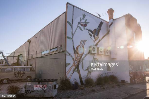 A yet to be completed wall mural by Thomas Jackson is seen on a building in Marrickville on August 7 2017 in Sydney Australia Perfect Match is an...