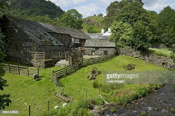 Yew Tree Farm which was once owned by Beatrix Potter