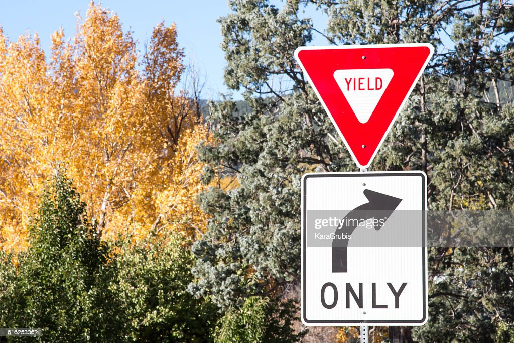 Yield and right turn only signs with autumn trees : Foto de stock