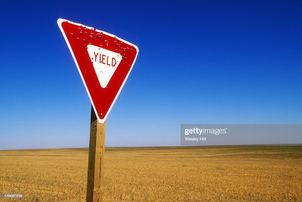 Yield road sign with bullet holes in it : Stock Photo