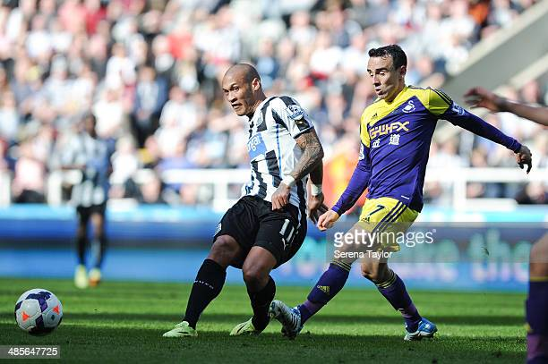 Yoan Gouffran of Newcastle passes the ball whilst being chased by Leon Britton of Swansea during the Barclays Premier League match between Newcastle...
