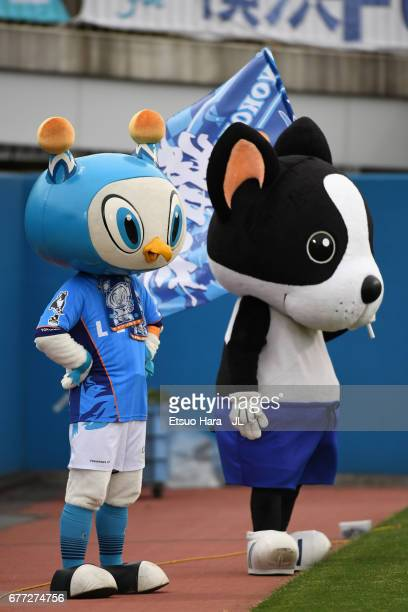 Yokohama FC mascot Fulimaru and Catchykun are seen prior to the JLeague J2 match between Yokohama FC and Ehime FC at Nippatsu Mitsuzawa Stadium on...