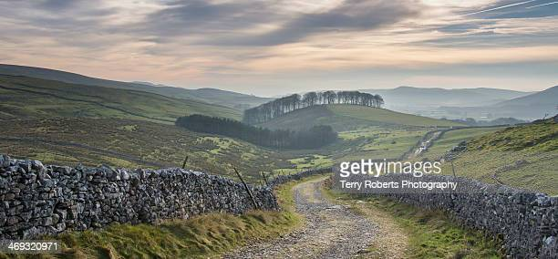 Yorkshire Dales Lane
