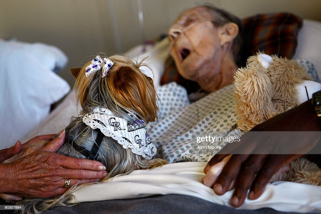A Yorkshire terrier sits with Annabelle Martin, 92, for a final session of pet therapy during Martin's final hours of life at the Hospice of Saint John on September 2, 2009 in Lakewood, Colorado. Martin had spent almost two and a half years living at the non-profit hospice, which strives to maintain quality of life, manage pain, and offer spirutal guidance for residents in their last stage of life. Government funding for counseling for end of life care has become a contentious issue in the current national debate on health care reform.