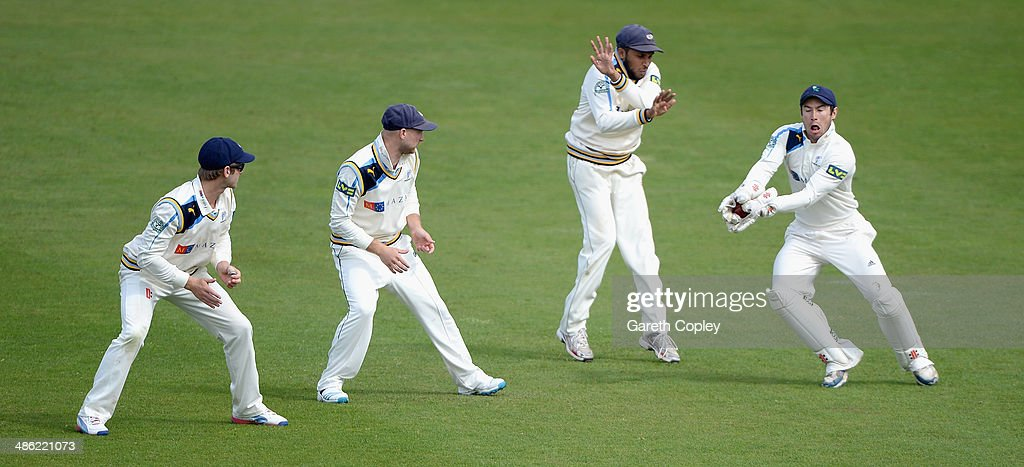 Yorkshire wicketkeeper Andy Hodd fields the ball alongside slipfielders <a gi-track='captionPersonalityLinkClicked' href=/galleries/search?phrase=Kane+Williamson&family=editorial&specificpeople=4738503 ng-click='$event.stopPropagation()'>Kane Williamson</a>, <a gi-track='captionPersonalityLinkClicked' href=/galleries/search?phrase=Adam+Lyth&family=editorial&specificpeople=4444475 ng-click='$event.stopPropagation()'>Adam Lyth</a> and <a gi-track='captionPersonalityLinkClicked' href=/galleries/search?phrase=Adil+Rashid&family=editorial&specificpeople=870228 ng-click='$event.stopPropagation()'>Adil Rashid</a> during day four of the LV County Championship division One match between Yorkshire and Northamptonshire at Headingley on April 23, 2014 in Leeds, England.