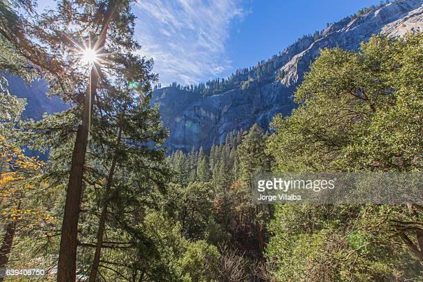 Parque Yosemite California