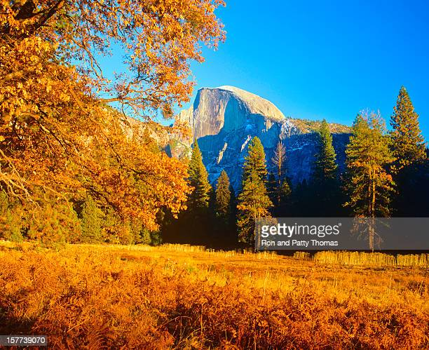 Yosemite magical autumn  (P)