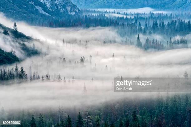 Yosemite Valley Mist