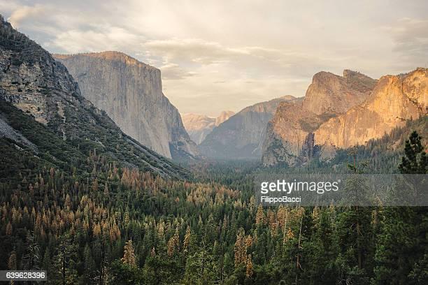 Vue sur le parc national de Yosemite, en Californie