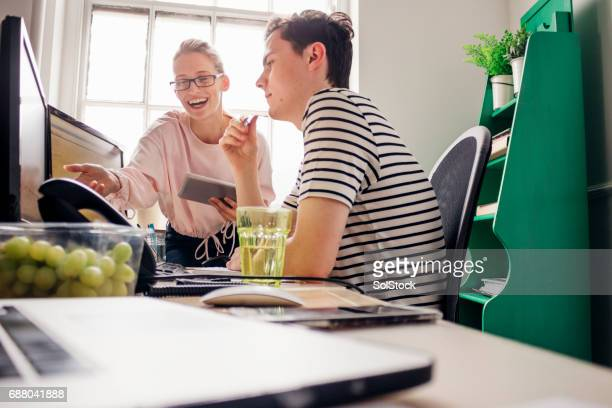 Young Adults Working at the Office