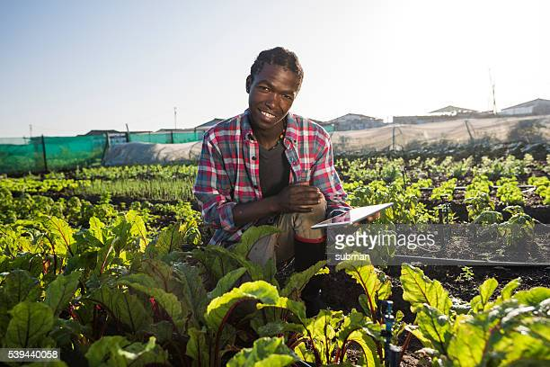 Young African male with tablet in vegetable garden