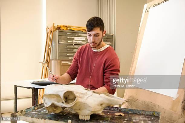 Young artist sketching ram's skull in his studio