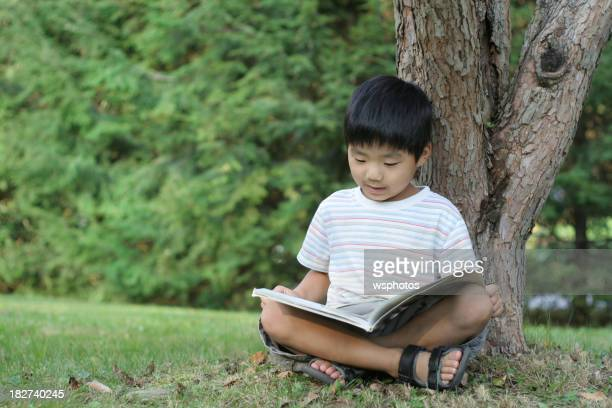 Young Asian boy reading under a tree in the summertime