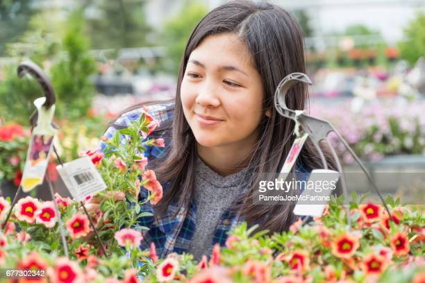 Young, Asian Woman in Garden Center Nursery Examining Hanging Baskets
