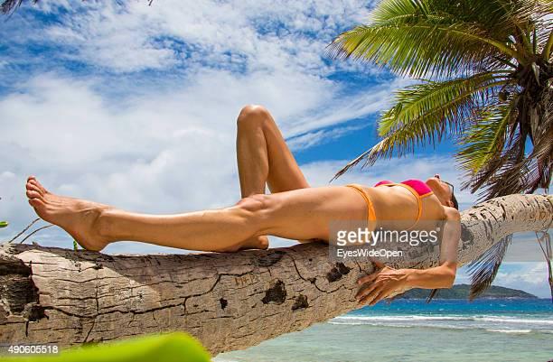 Young beautiful woman in a bikini lying on a palmtree at white sandy Banana Beach on September 27 2015 in La Passe La Digue Seychelles