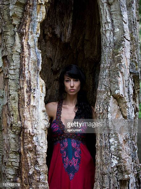 Young beautiful woman inside of a tree