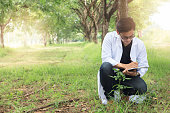 Young Biology researcher Keep specifics of sample flowers in a nature park, Copy space
