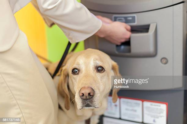 Young blind woman using a bank ATM with her service dog waiting