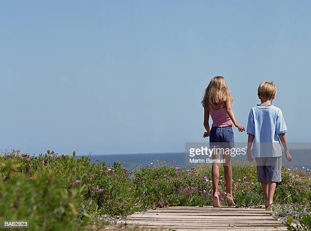 Young boy and girl (5-8) walking along wooden path, rear view