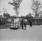 Young boy at Central Park Zoo New York looking as he passes a vendor selling a range of items including unbrellas and Mickey Mouse balloon from an...