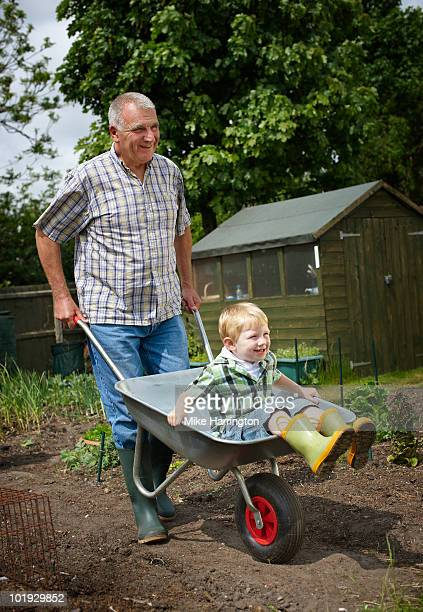Young boy being pushed in Wheelbarrow