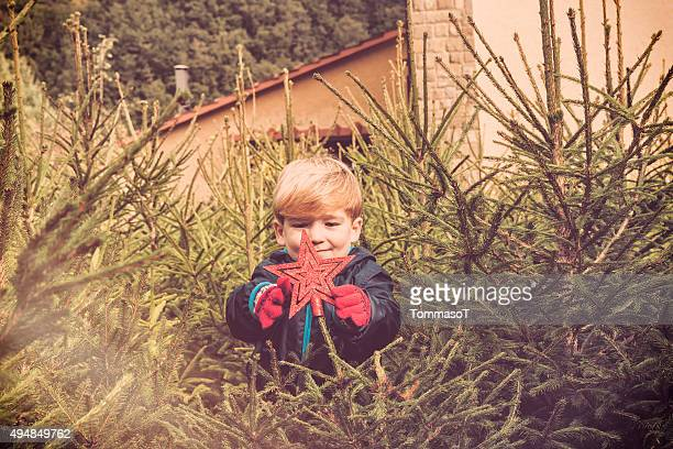 Young boy decorating trees in the woods