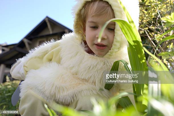 Young boy dressed as Easter bunny, close up