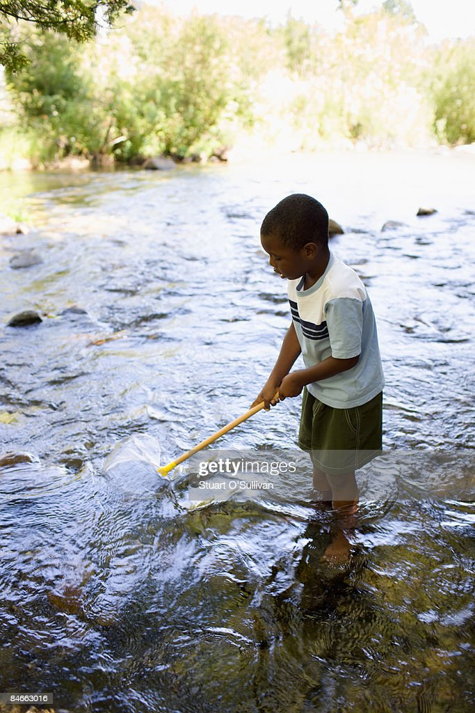 Young boy fishing with net in stream : Stock Photo