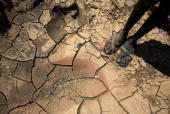 A young boy from the remote Turkana tribe in Northern Kenya stands on a dried up river bed on November 9 2009 near Lodwar Kenya Over 23 million...