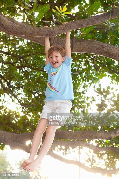 Young boy hanging on to tree branch smiling