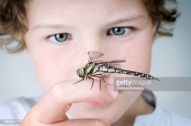 Young Boy Holding A Dragonfly Close Up Portrait
