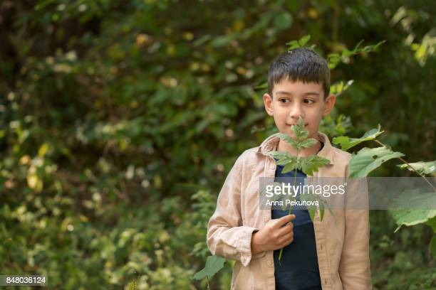 Young boy holding a plant in this hand