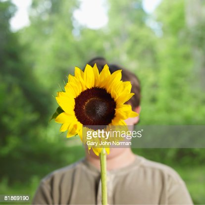 Young boy holds sunflower over face : Stock Photo