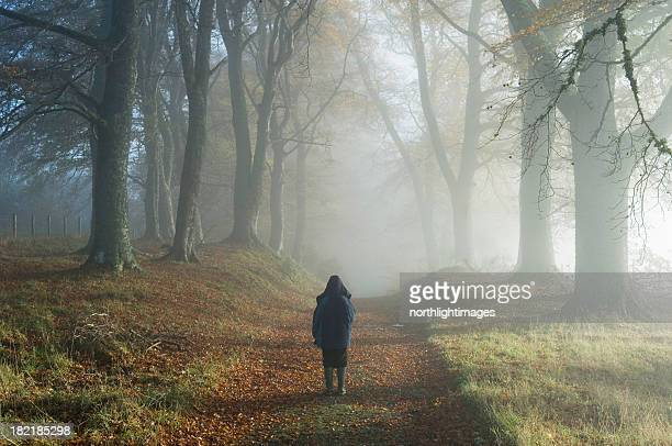 Young boy in misty woodland