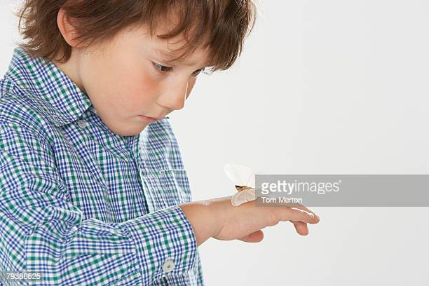 Young boy indoors looking at a moth on hand