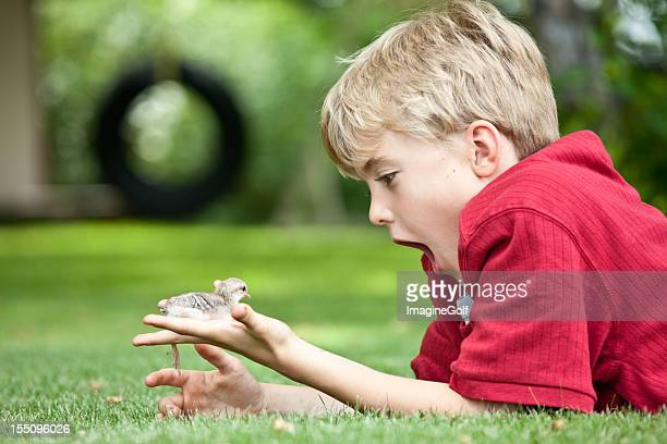 Young Boy Looking at Baby Chick
