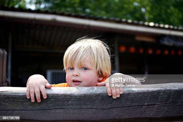 Young boy looking out over a wooden fence