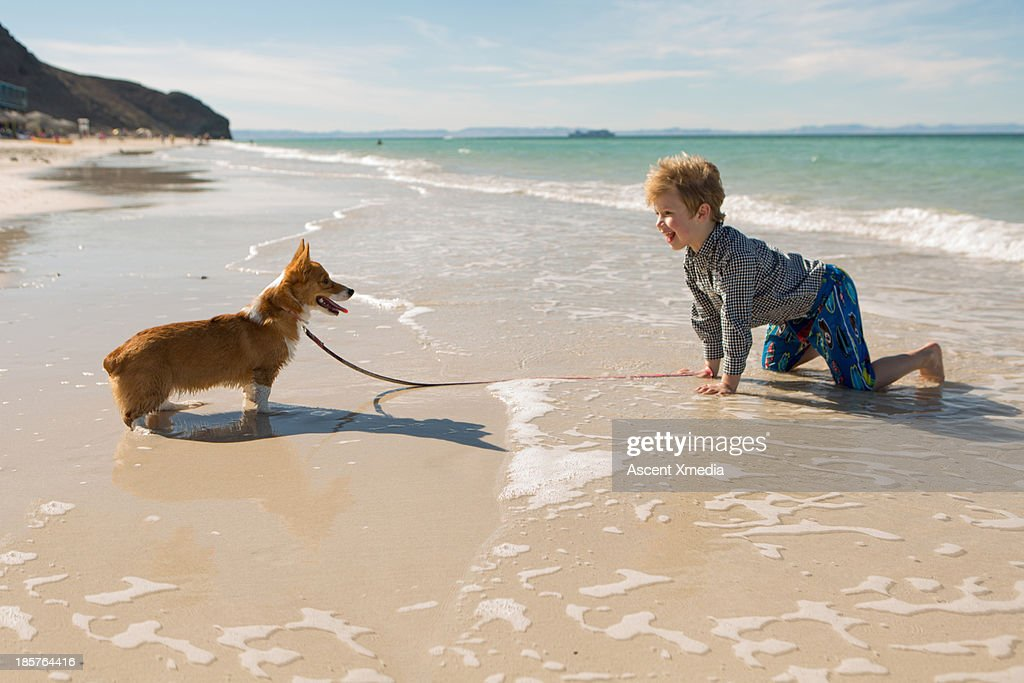 Young boy makes faces with dog on beach : Stock Photo