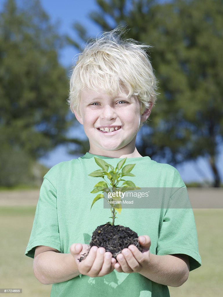 Young boy outdoors holding small sapling : Stock Photo