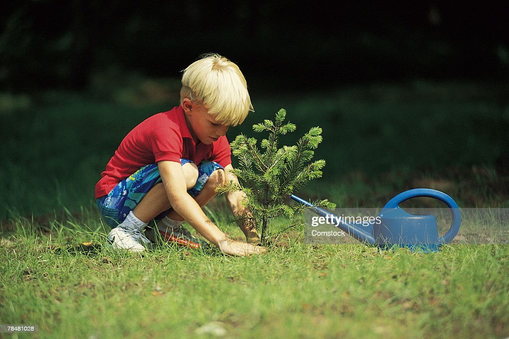 Young boy planting a seedling