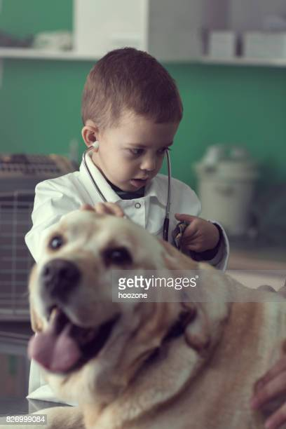 Young Boy Playing a Veterinarian at the Vet's Office