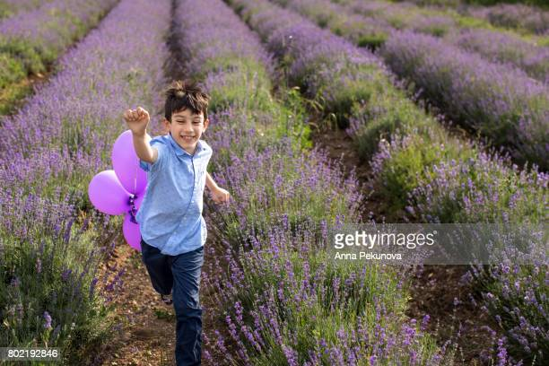 Young boy running in a lavender field