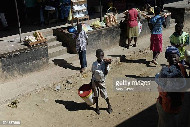 A young boy sells lychees on the side of the road to Mutare Zimbabwe on November 8th 2015 During the elections of 2013 street vendors were encouraged...
