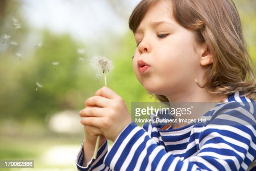 Young Boy Sitting In Field Blowing Dandelion : Foto de stock