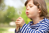Young Boy Sitting In Field Blowing Dandelion