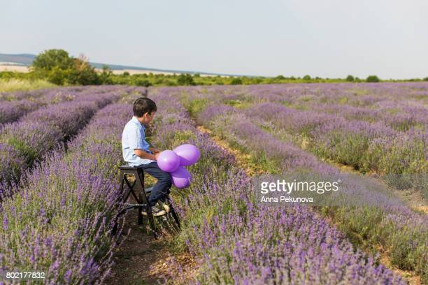Young boy sitting on a wooden leather holding baloons in a lavender field