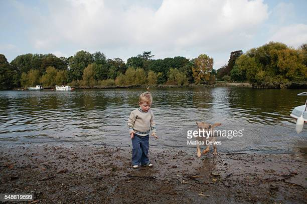 Young boy throwing a stick into a river and a dog