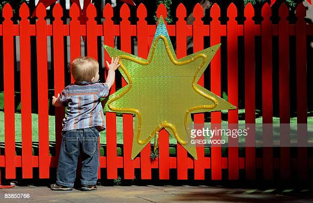 A young boy touches a star which adorns a fence surrounding Sydney's iconic Christmas tree in the city centre on November 27 2008 The tree has been...