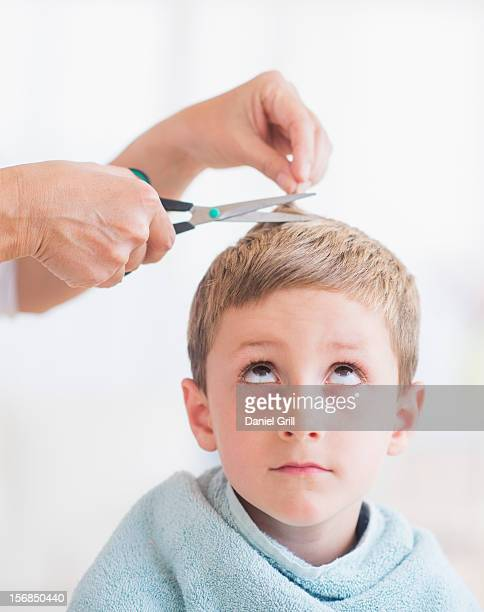 Young boy (6-7) undergoing haircut