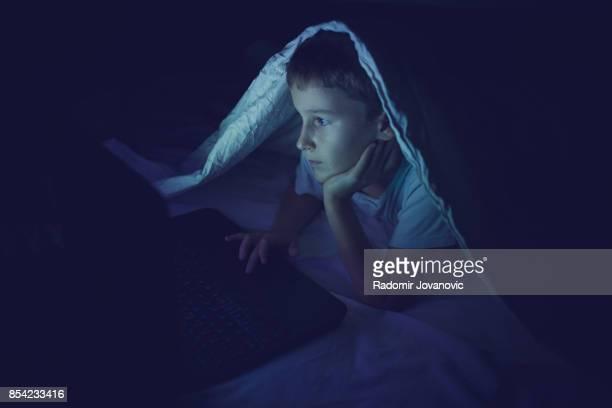 少年の自宅のコンピューターを使用して